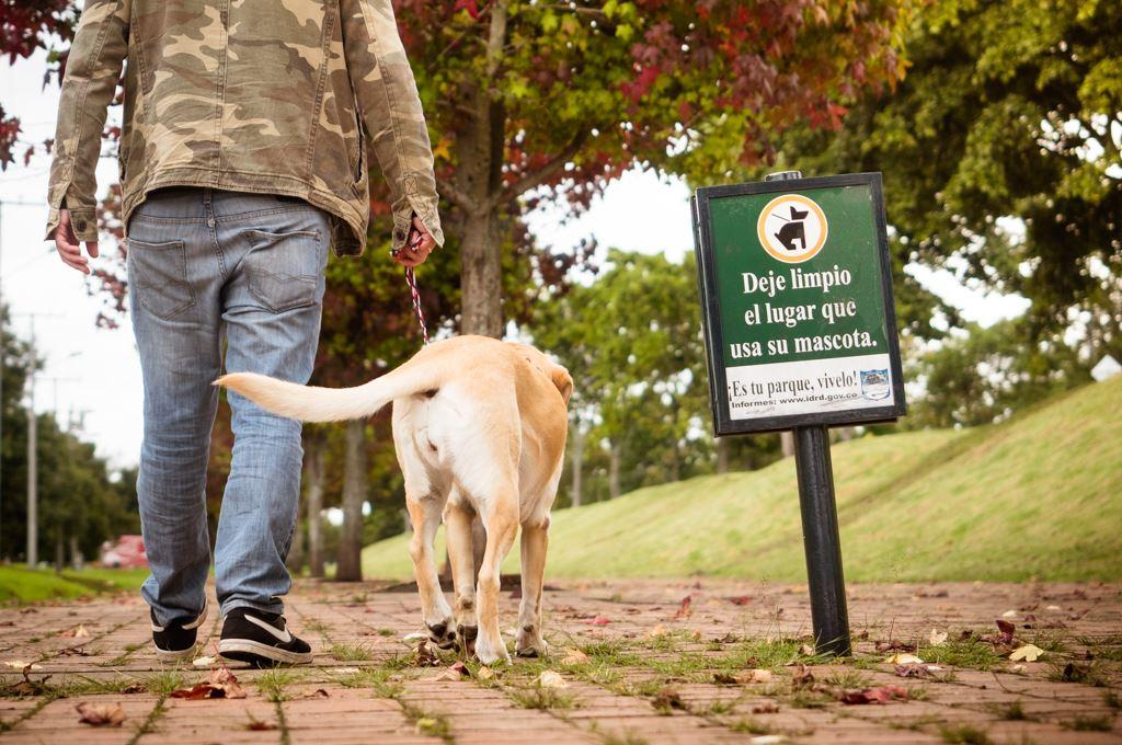 Cómo incentivar a los responsables de perros a recoger los excrementos de sus  mascotas? - Bogotá Abierta