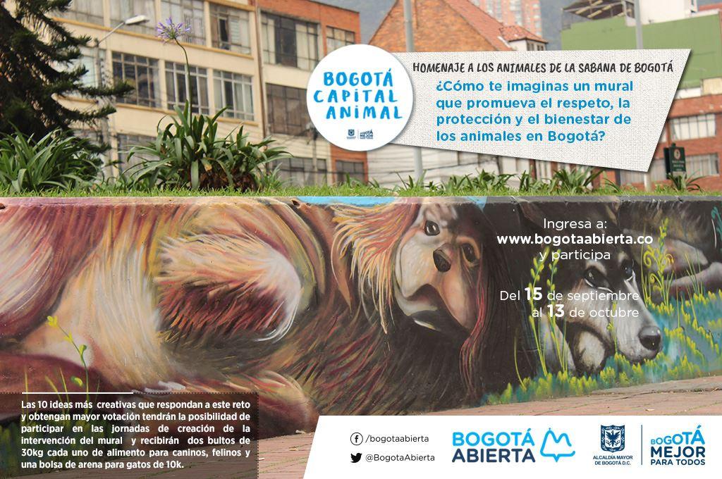 ¿Cómo te imaginas un mural que promueva el respeto, la protección y el bienestar de los animales de Bogotá?